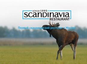 Ресторанные новости - Рыбная вечеринка в ресторане Scandinavia